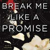Review: Break Me Like A Promise by Tiffany Schmidt